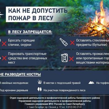 мчс_-_как_не_допустить_пожар_в_лесу